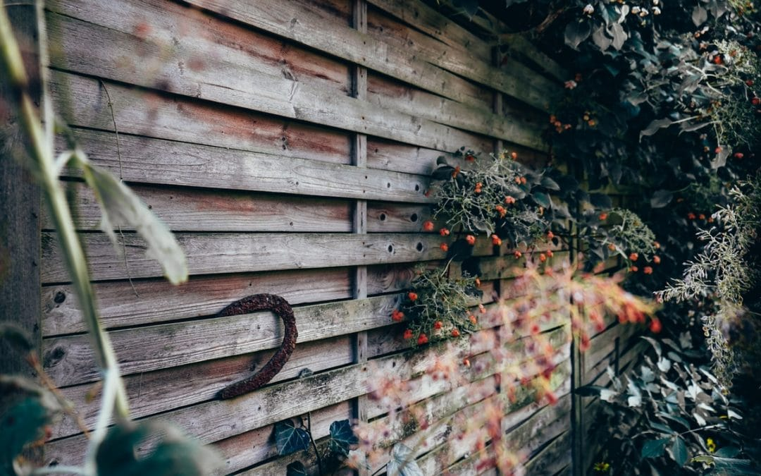 Best Fence Paint – 7 of the Best for Year-Round Protection